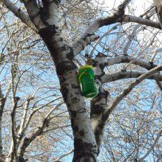 ساخت لانه پرنده با مواد بازیافتی
